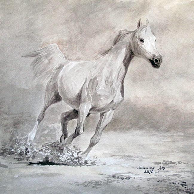 Схема для вышивки крестом «Лошади 9 » 80 Х 80
